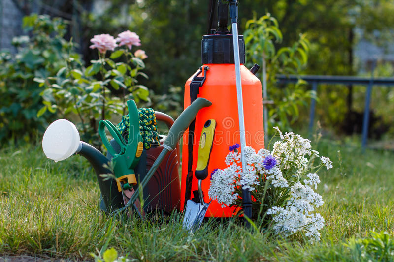 Fertilizer pesticide garden sprayer, watering can and some garden tools on green grass stock photography