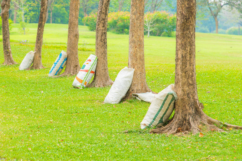 Download Fertilizer tree stock image. Image of care, agriculture - 70349539