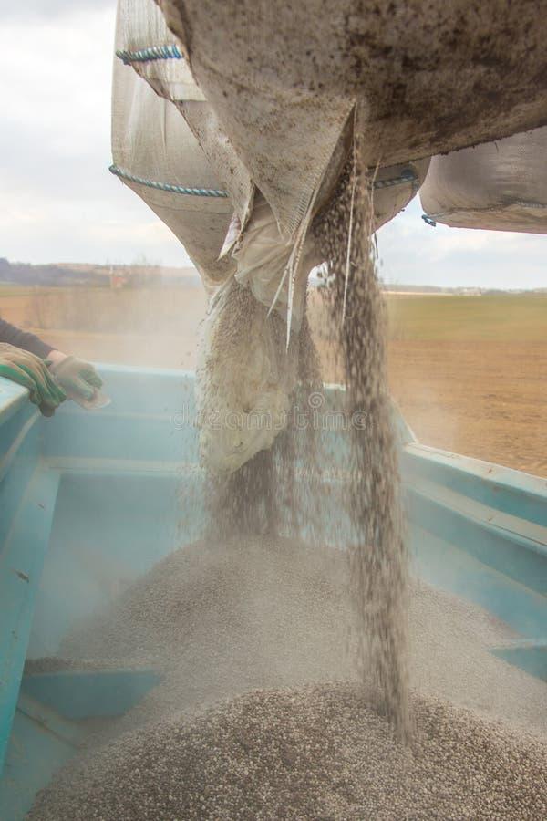 fertilizing fotografia de stock