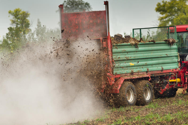 Fertilizing field. Tractor with trailer fertilizing field with natural manure stock photography