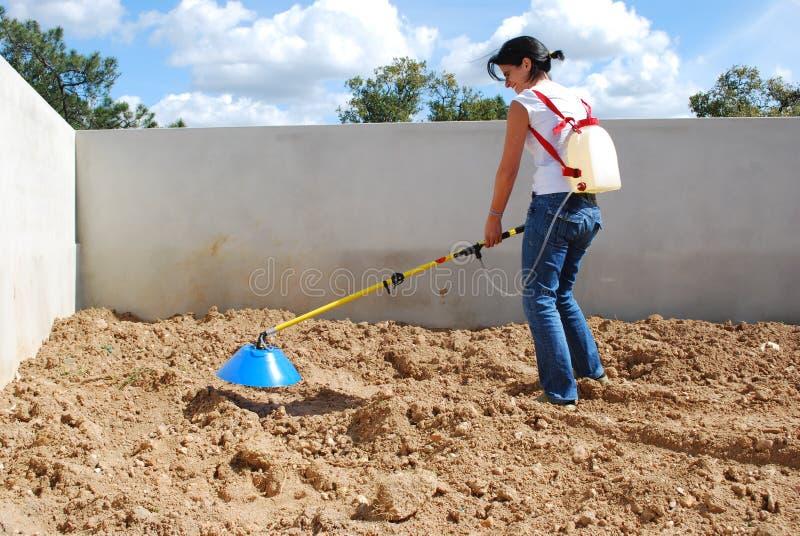 Fertilizzazione del terreno con solfato immagine stock
