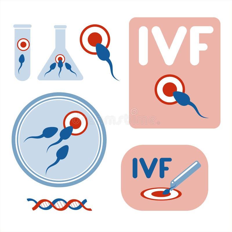 Fertilizzazione in vitro Raccolta delle immagini di vettore illustrazione di stock