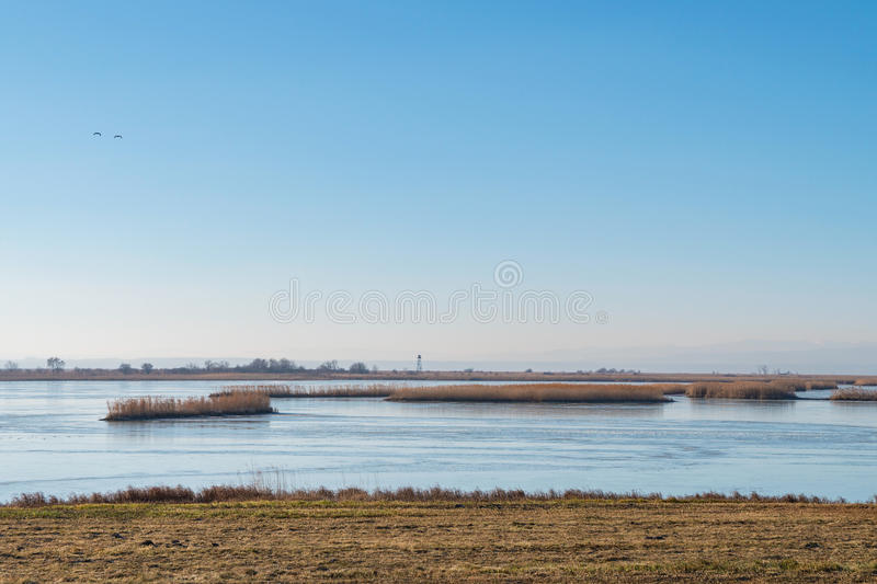 Ferto-Hansag National Park with lookout tower, Hungary. Ferto-Hansag National Park with lookout tower in winter near Fertoujlak, Hungary royalty free stock image