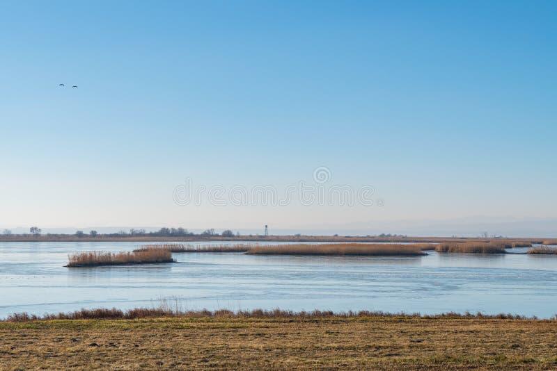 Ferto-Hansag nationalpark med utkiktornet, Ungern royaltyfri bild