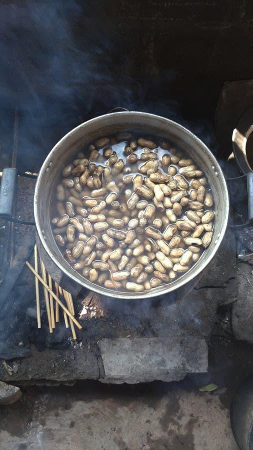 Ferva o feijão da porca no alimento quente de Tailândia do potenciômetro fotografia de stock royalty free