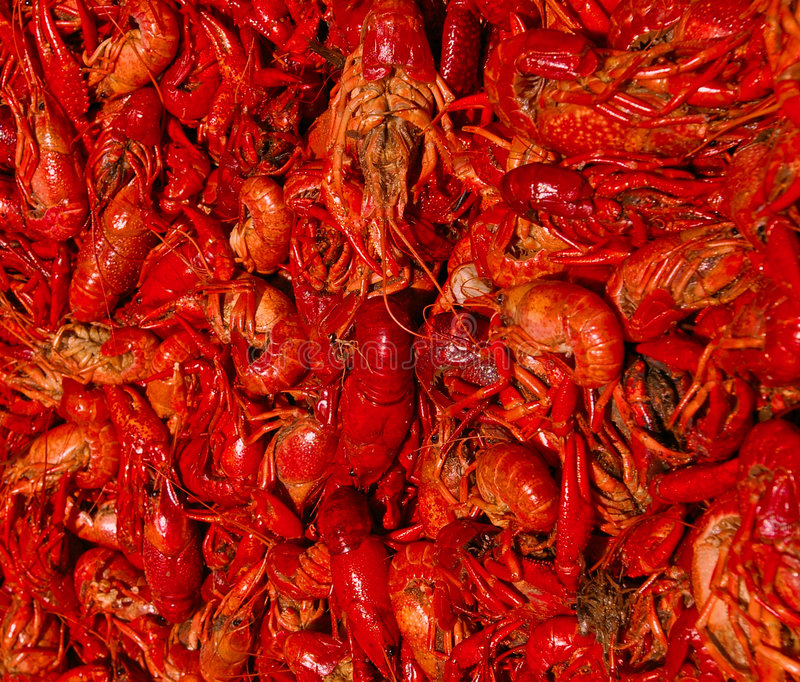 Fervura dos lagostins foto de stock royalty free