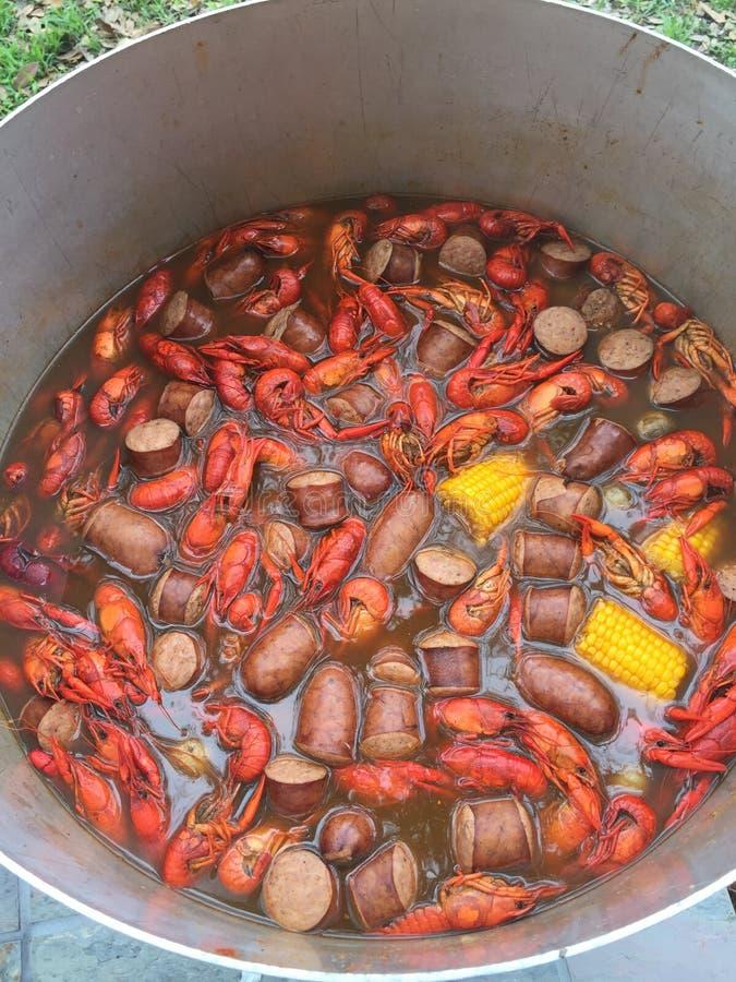 Fervura dos lagostins imagem de stock