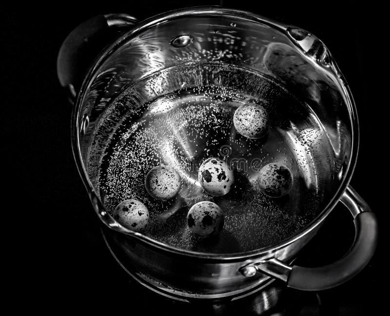 Fervura dos ovos de codorniz em uma caçarola do metal fotos de stock royalty free