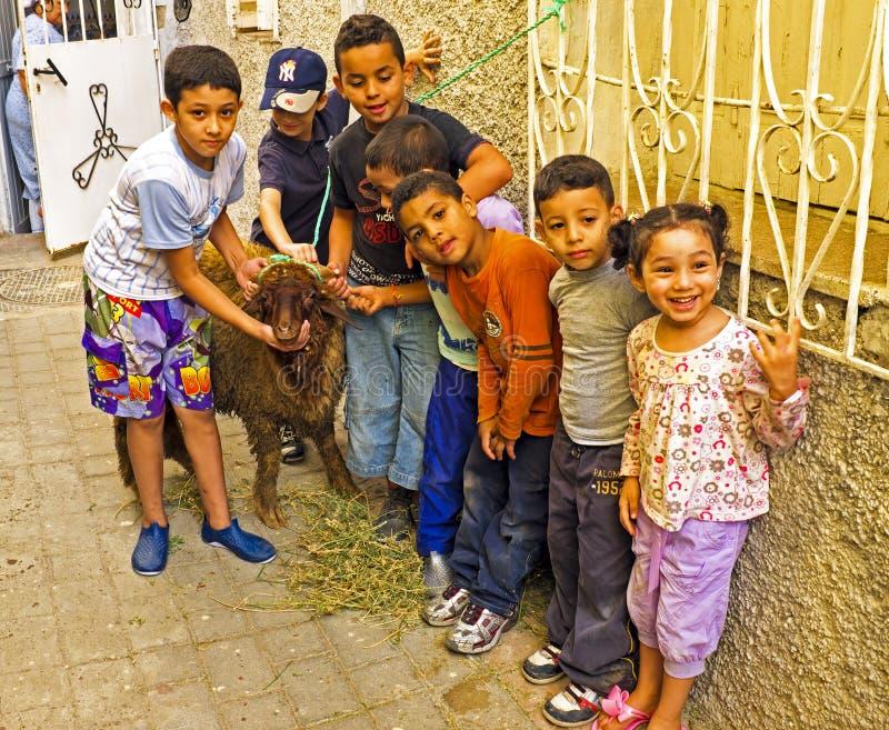 FES, MAROCCO - 2013年10月15日:与他们的绵羊的孩子在Eid Al 免版税库存照片