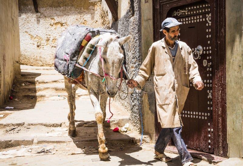 Fes, Marocco, mężczyzna z koniem w starej Medina przesmyka ulicie obraz stock