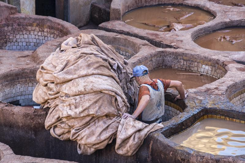 Man working as a tanner in the dye pots at leather tanneries in the ancient medina stock photos