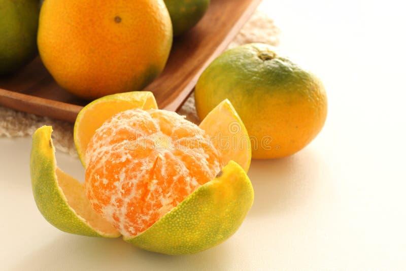Feshness Mikan arancio giapponese sul piatto di legno immagini stock libere da diritti