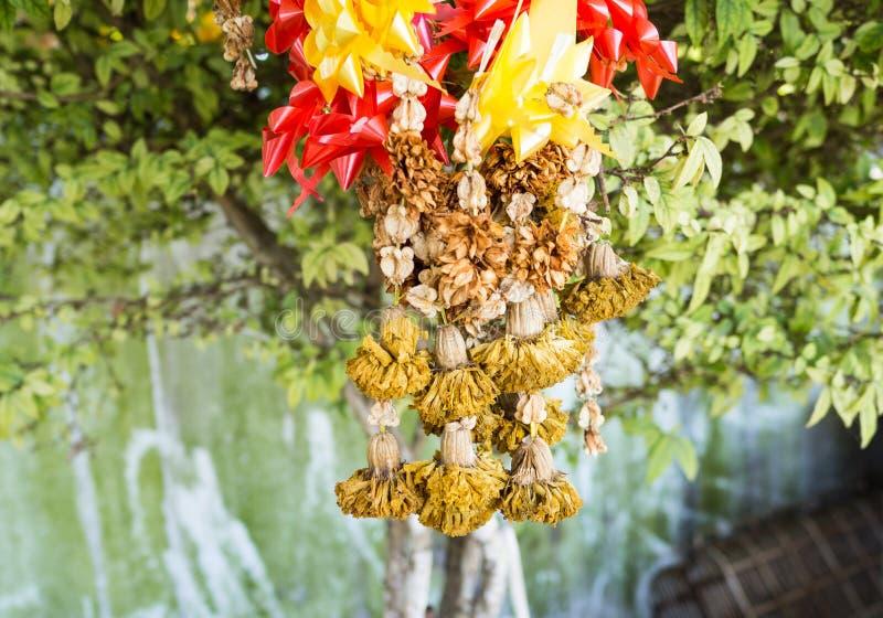 A festão da flor murchada imagens de stock royalty free