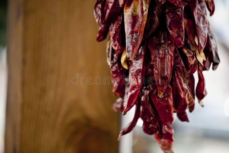 Festão da pimenta vermelha foto de stock