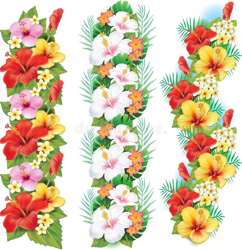 Festão de flores do hibiscus ilustração do vetor