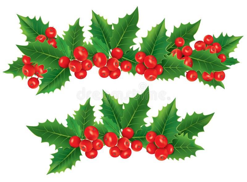 Festão do Natal de bagas do azevinho ilustração stock