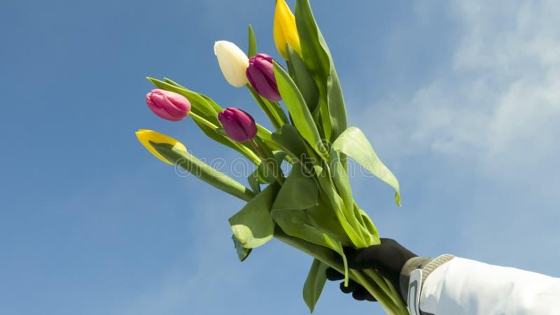 Festa del ` s delle donne l'8 marzo immagine stock libera da diritti