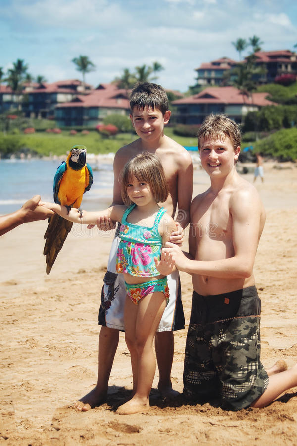 Festa della spiaggia dell'Hawai immagine stock