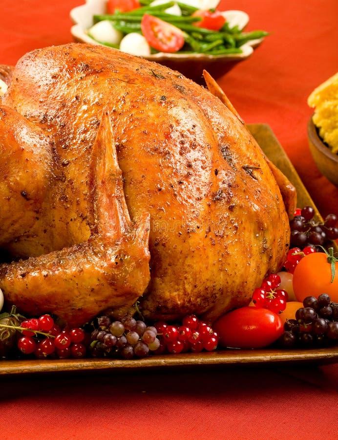 Festa Turchia immagine stock