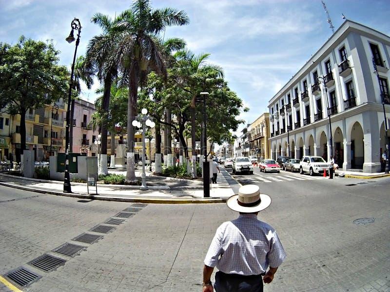 Festa a Veracruz immagine stock