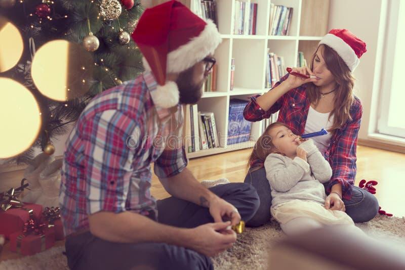 Feste della famiglia immagini stock libere da diritti