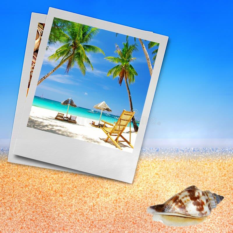 Feste tropicali immagini stock libere da diritti
