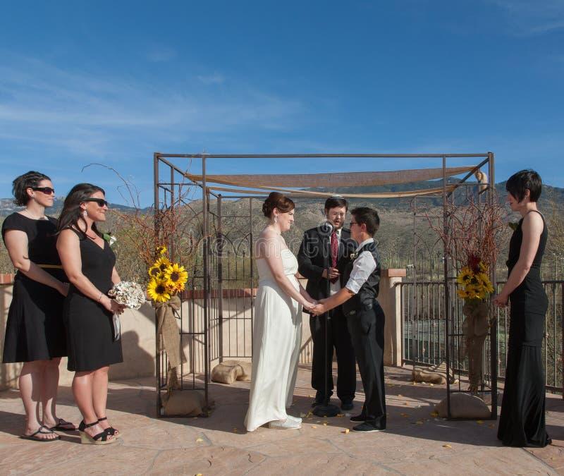 Festgelegte homosexuelle Paare in der Zeremonie stockfotos