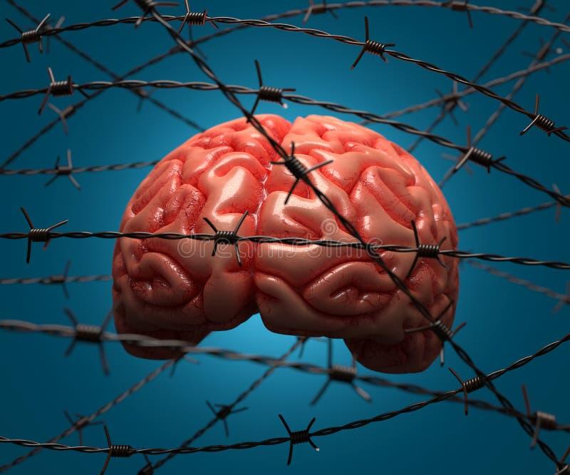 Festgenommenes Gehirn stockfoto