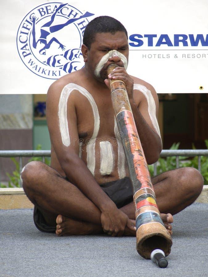 Festival 2 de Honolulu imagens de stock royalty free