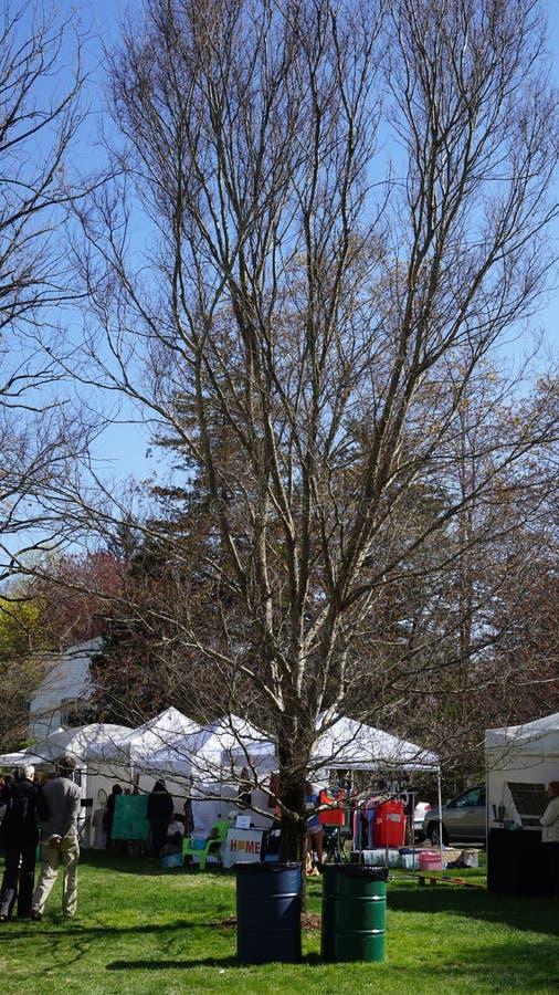 Festival annuel de cornouiller à Fairfield, le Connecticut images stock