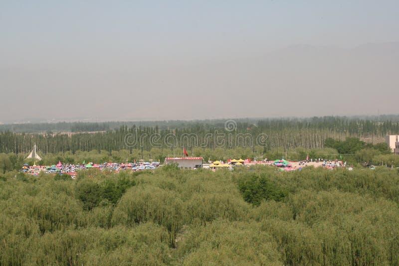 Download Festival chino foto editorial. Imagen de señales, proyectos - 41907466