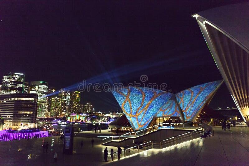 Festival claro VÍVIDO Sydney Australia imagem de stock
