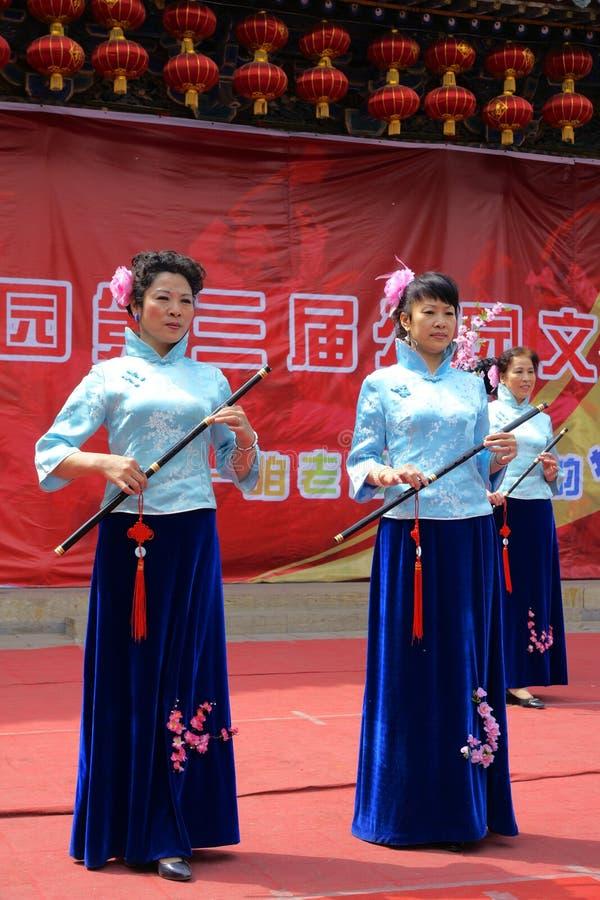 Festival cultural do parque foto de stock royalty free