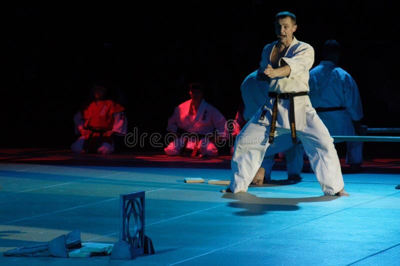 Festival d'arts martiaux en Russie images stock