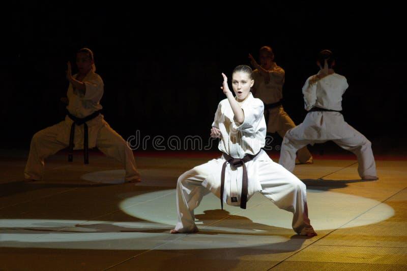 Festival d'arts martiaux en Russie photo libre de droits