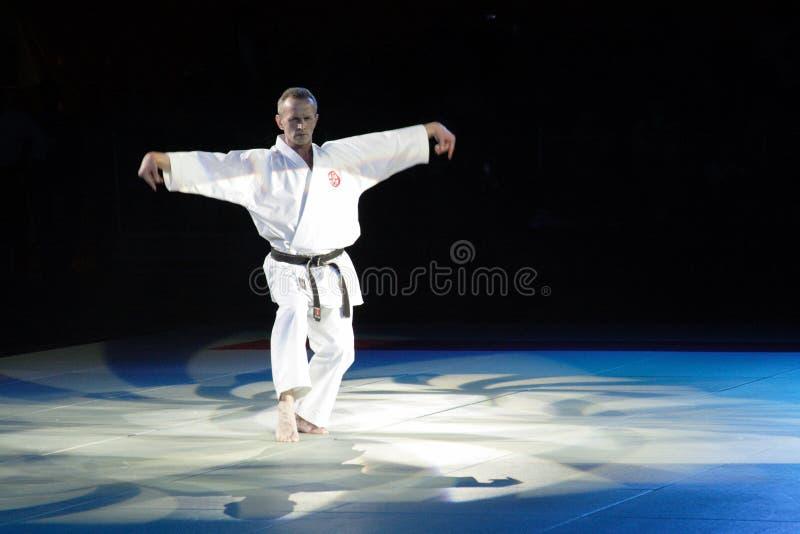 Festival d'arts martiaux en Russie image libre de droits
