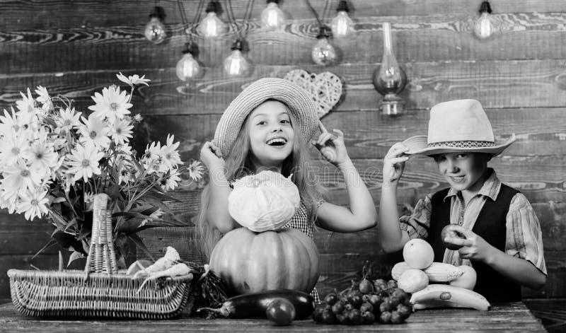 Festival da colheita do outono Couve da ab?bora dos vegetais do jogo de crian?as O chap?u do desgaste do menino da menina das cri imagem de stock
