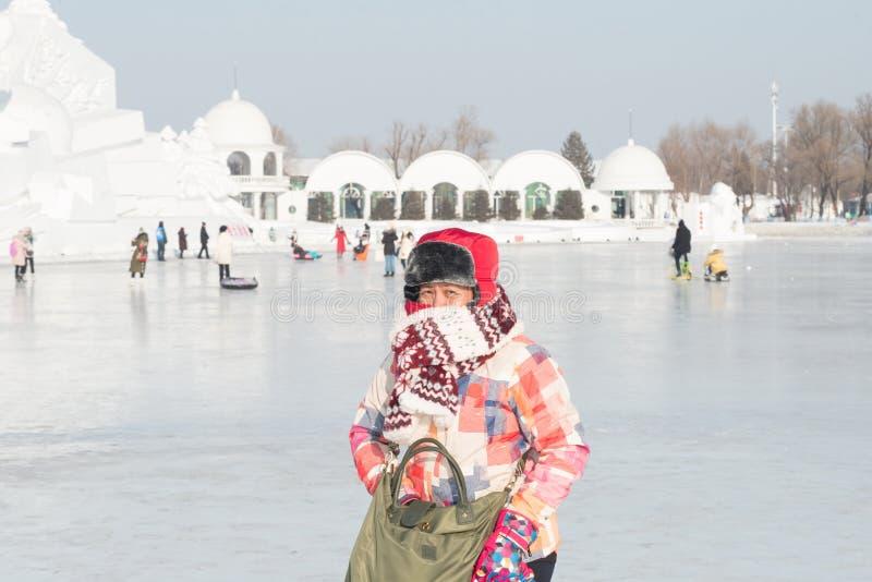 Festival 2018 de glace et de neige de Harbin photo libre de droits