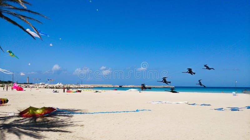 Festival de la cometa en una playa en un día soleado foto de archivo