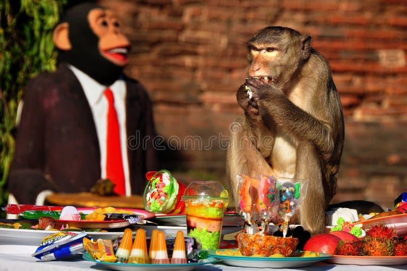 Festival de la comida fría del mono en Lopburi, Tailandia fotos de archivo