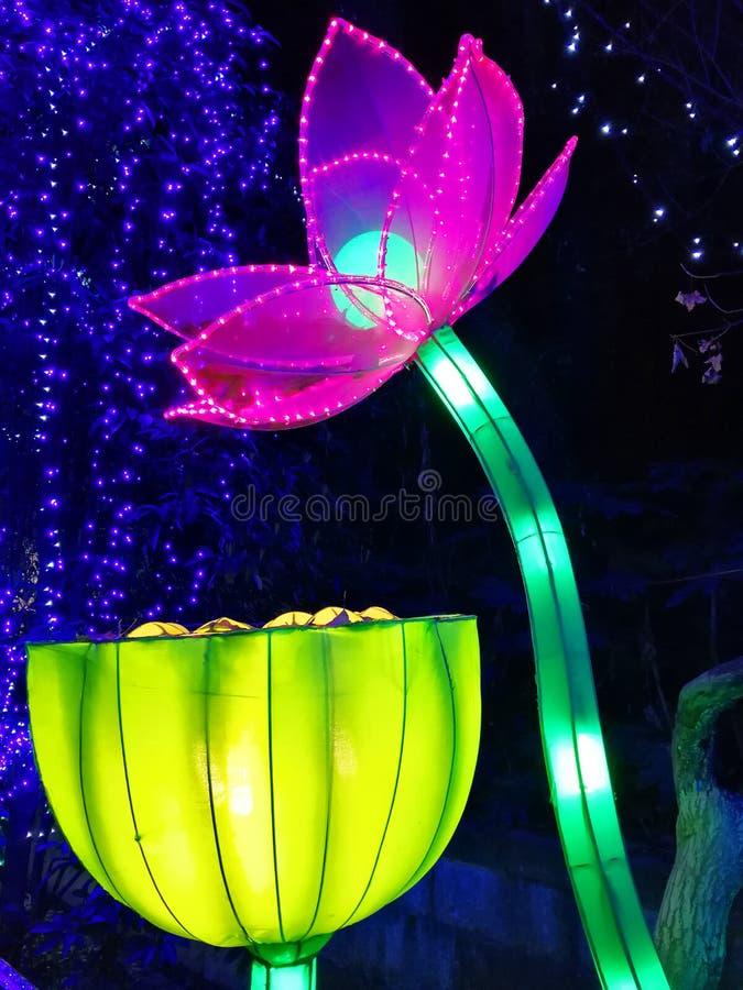 Festival de lanterna no ¼ Œ China de Zigongï foto de stock royalty free