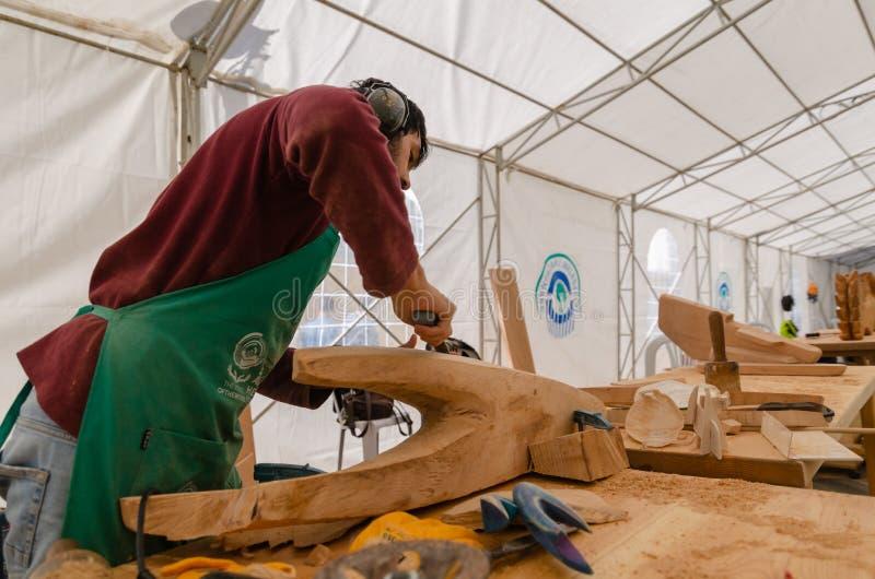 Festival de madeira internacional da escultura de Eskisehir ó fotografia de stock royalty free