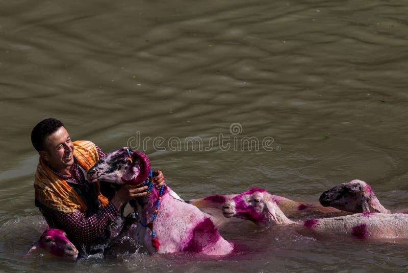 Festival de mer profonde dans Denizli en Turquie images stock