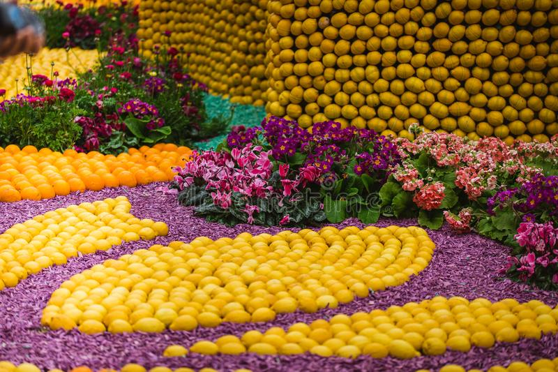 Festival 2018 del limón de Menton, arte del tema de Bollywood hecho de limones y naranjas, primer imagenes de archivo