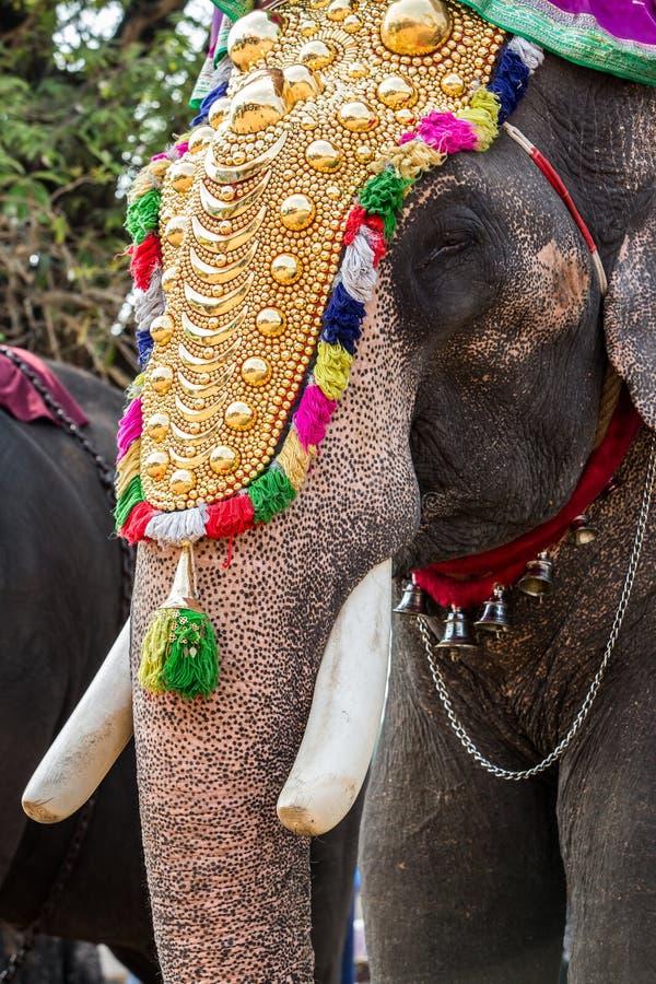 Festival dell'elefante dell'India immagini stock libere da diritti