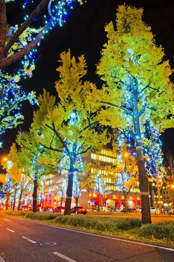 Festival des lumières à Osaka photos stock