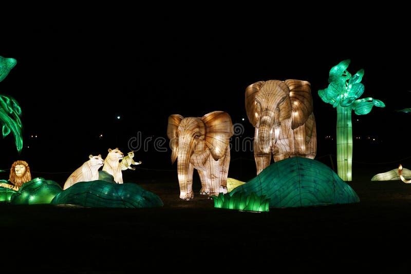 Festival di lanterna cinese fotografie stock