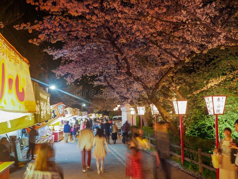 Festival di notte di Cherry Blossom immagine stock