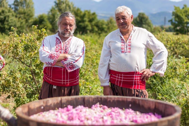 Festival di raccolto di Rosa immagine stock libera da diritti