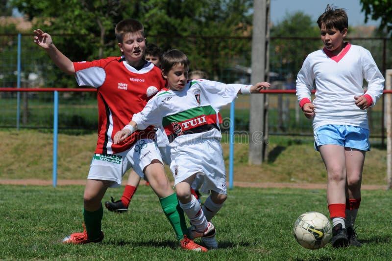 Festival do futebol da criança imagem de stock royalty free
